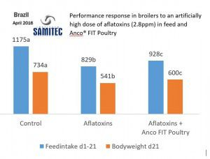 Anco FIT Poultry_Brazil_Trial