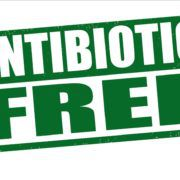 antibiotic-free feeding information provided by anco