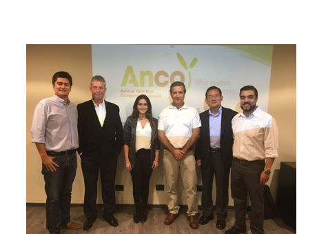 anco fit launch - chile -ancofit