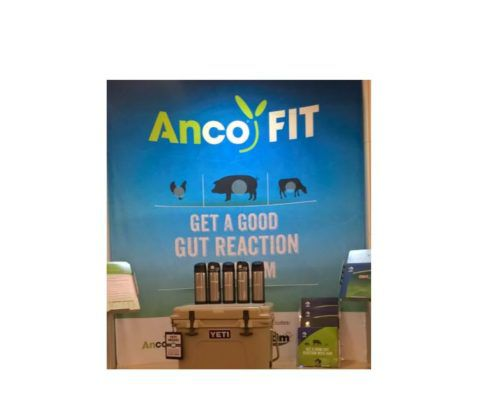 world pork expo - anco fit -ancofit - swine