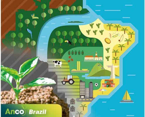 anco brasil - feed additives - brazil - anco fit - ancofit