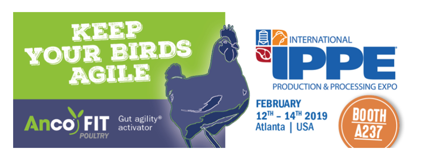 IPPE 2019 - Anco FIT Poultry