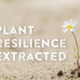 plant resilience - animal resilience