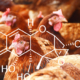 DON - laying hens - mycotoxins