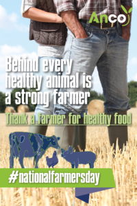 anco - farmer - healthy animals