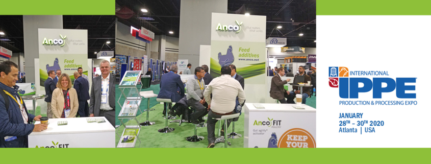 anco fit poultry - ippe 2020