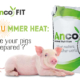 heat stress in pigs - Anco FIT
