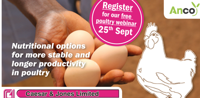 poultry farmers in nigeria - caesar and jones -
